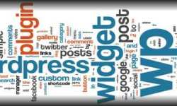 Wordpress Professionel Tema og CMS Installation